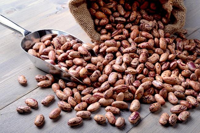 Fasola czerwona - kalorie, kcal, ile waży