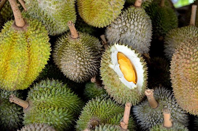 Durian - kalorie, kcal, ile waży
