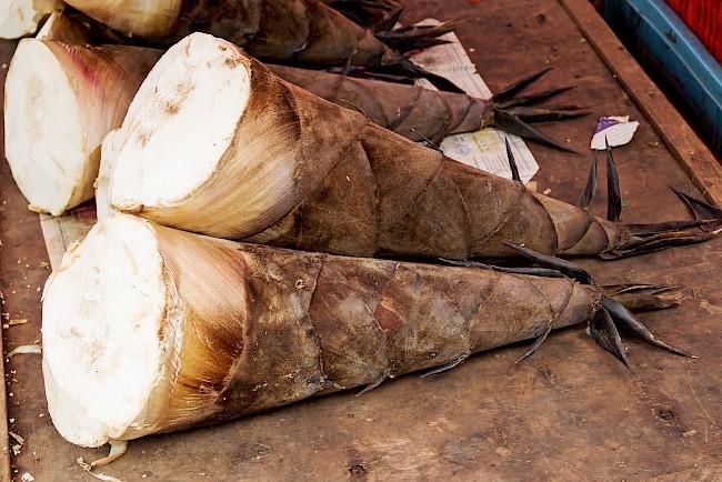 Pędy bambusa - kalorie, kcal, ile waży