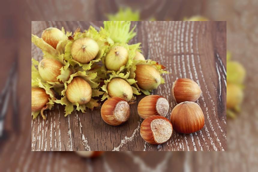 Orzechy laskowe - kalorie, kcal, ile waży