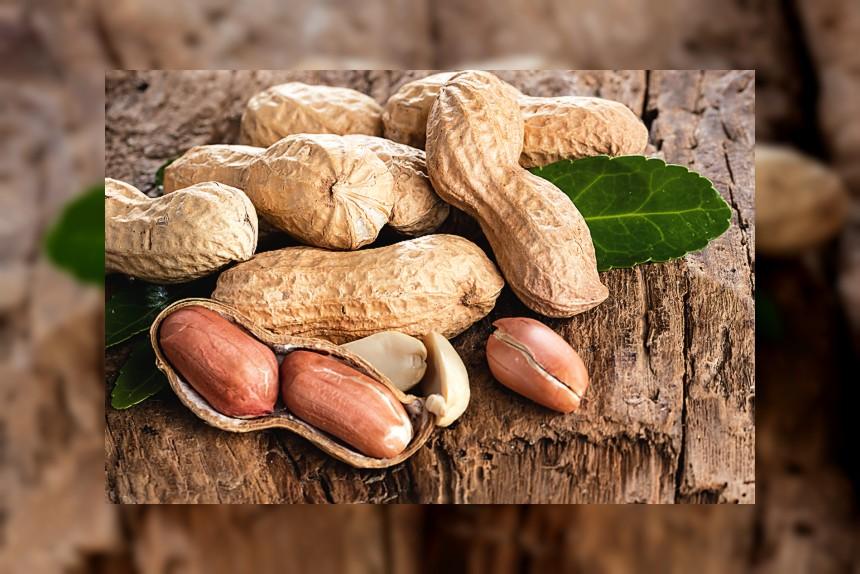 Orzeszki ziemne (fistaszki) - kalorie, kcal, ile waży
