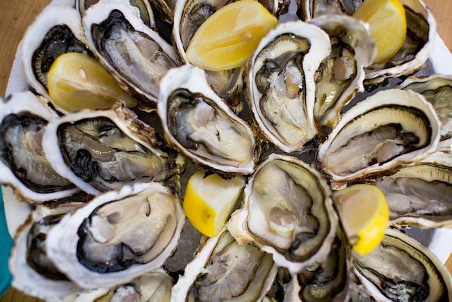 Ostrygi - kalorie, kcal, ile waży